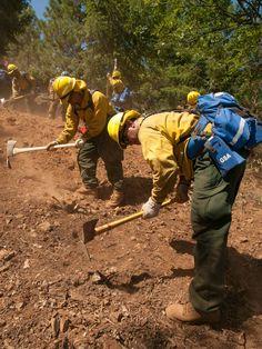 Widening the line. Thin Green Line, Wildland Firefighter, California Love, Firefighting, Worship, Bones, History, Funny, Happy