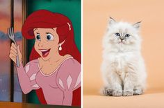 Who needs a prince when you can have a cat?