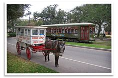 Roman Candy wagon, drawn by a mule.  In the background is the famous St.Charles Avenue Streetcar.