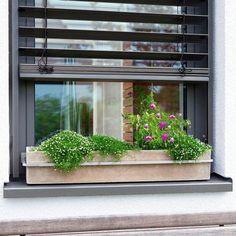 die 17 besten bilder von blumenkasten fensterbank balkon blumenkasten fensterbank und fenster. Black Bedroom Furniture Sets. Home Design Ideas