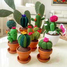 My little cactus (English) Crochet Home, Crochet Gifts, Cute Crochet, Cactus En Crochet, Crochet Flowers, Tshirt Garn, Cactus Craft, Crochet Hook Sizes, Crochet Basics