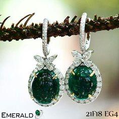 Emerald beautiful earring to give you wonderful look.