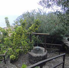 Teneriffa Blick auf einen Garten mit Brunnen, Garachico