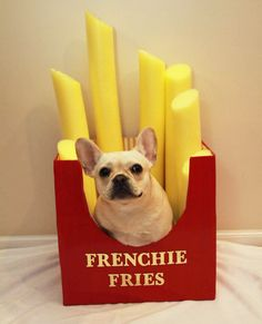 This Frenchie Fries costume is too cute.