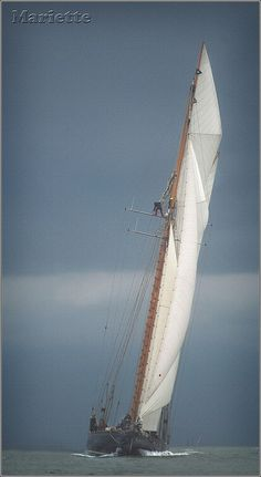 Mariette - More Sail! | by rogermccallum