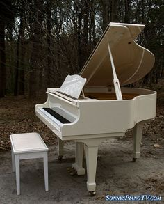 See prices & Sonnys informative, entertaining videos of our pre-owned, used Steinway and other brand pianos. We buy & sell all brand pianos. Piano For Sale, White Piano, Piano Art, Baby Grand Pianos, Orchestra, My House, Musical Instruments, Art Museum, Woods