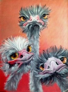 3 Crazy Ostrich Diamond Painting Source by martialmouret Bird Drawings, Animal Drawings, Chicken Painting, Funny Birds, Arte Popular, Watercolor Bird, Whimsical Art, Animal Paintings, Bird Art