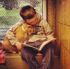 "goodstuffhappenedtoday:  Children Read To Shelter Cats To Soothe ThemAbove, Colby is cuddling with the kitty and reading him ""I Will Love You Forever"" by Robert Munsch. At Animal Rescue League of Berks County, children can read to shelter cats to soothe them. The cats adore them and are always delighted to have these little humans there to keep them company. Children in grades 1-8 who are able to read at any level are welcome into the shelter to read to the cats at their adoption room. ""The…"