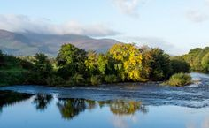 The Flesk river in Killarney