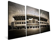 NCAA Stadium Canvas Triptych for $49.99 - $119.99--  https://d3gqasl9vmjfd8.cloudfront.net/7e6a4c19-859b-43b6-a7dc-d76a3cbc1901.jpg