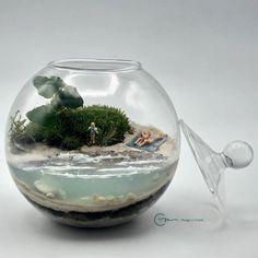 Terrario de musgo vivo en bola de cristal de diámetro 10 cm. Todos los productos utilizados , salvo el agua, son naturales. Playa Caribe , por la arena blanca , por el color del mar y por su luz. Natural, Color, Home Decor, Moss Terrarium, Terrariums, Mini Gardens, Crystal Ball, Unique Gifts, Products