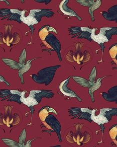 My Owl Barn: Wallpapers, Patterns and Prints by Katie Scott