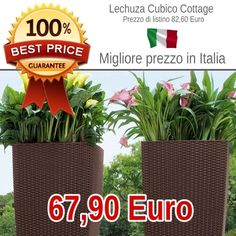 pin do a floricoltura il mio giardino em online shop. Black Bedroom Furniture Sets. Home Design Ideas