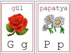 1. Sınıf İlkokuma Gruplarına Göre Hazırlanmış Renkli - Resimli Ses-Harf Kartları