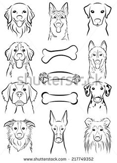 Drawing Techniques Dog / Line drawing Stock Vector - 31655863 - - Millions of Creative Stock Photos, Vectors, Videos and Music Files For Your Inspiration and Projects. Dog Line Drawing, Dog Line Art, Dog Art, Dog Drawing Simple, Animal Drawings, Art Drawings, Drawing Faces, Desenho Tattoo, Dog Illustration