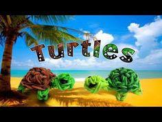 Rainbow Loom New 3D Turtle/Franklin the Turtle Figure/Charm - How to - Animal Series