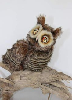 cool owl By Averina Olesya - Bear Pile