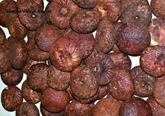 Areca nut red