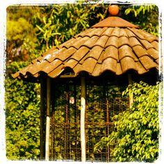 Birds Cage Dog Enclosures, Squirrels, Bird Cage, Gazebo, Birds, Outdoor Structures, Garden, Dogs, Chipmunks