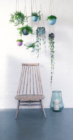 Just love this assortments of hanging pots and colouring Indoor Garden, Indoor Plants, Home And Garden, Air Plant Display, Plant Decor, Decoration Plante, Deco Floral, Hanging Pots, Interior Plants
