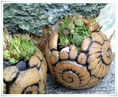 Garten-Keramik: Schnecken click the link now for more info. Ceramic Clay, Ceramic Planters, Ceramic Bowls, Slab Pottery, Ceramic Pottery, Pottery Art, Organic Ceramics, Coil Pots, Pottery Handbuilding