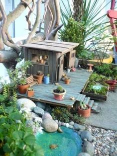 To make your own fairy garden, choose the proper container, and be sure to choose a container that is not too deep. Try to always use a good weed free potting soil and never use topsoil or black earth as plants cannot breathe in these heavy soils that lack of nutrient. The key of your fairy garden is a good light, so try to find the place that have the best daylight. And once you have your base, you can start to plant your fairy plants.