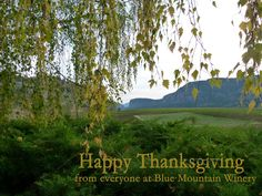 Happy Thanksgiving, Thanksgiving Recipes, Pumpkin Pie Recipes, Blue Mountain, Events, Happy Thanksgiving Day
