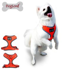 Free shipping 4 sizes Available Nylon Reflectiing Ribbon Harness Vest Adjustable Size Dog Leash Harness Set for Small Dog