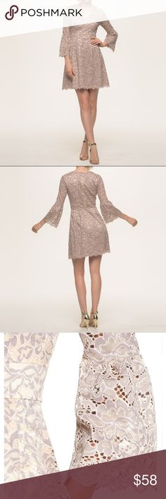 🎀 Beautiful Eliza J Lace Dress Beautiful bell sleeve fit-and-flare lace dress from Eliza J. Lined. Color is more like first pictures.🚨Bundle and get 15% off! 🚨 Eliza J Dresses