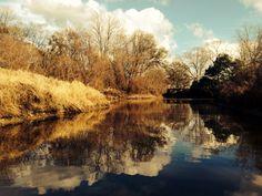Still waters run deep in Louisiana Photo AnneMarie Talon #Louisiana #landscape