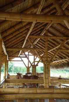 Caballeriza en bamboo. Diseño y construcción. Loaiza Construcciones. Bucay, Ecuador. Bamboo Architecture, Sustainable Architecture, Bamboo Roof, Bamboo House Design, Bamboo Building, Bamboo Structure, Bamboo Construction, Roof Trusses, Bamboo Crafts