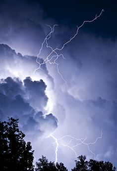 Lashing Out by Edson_Matthews, via Flickr