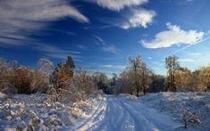 Preview tapéta tél, hó, út, nyomok, bokrok, fák, hóval, felhők, ég tiszta