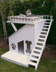 Muebles para Mascotas, Ideas Funcionales y Divertidas8
