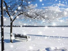 Snow provokes responses that reach right back to childhood. I Love Snow, I Love Winter, Snow Quotes, Glitter Pictures, Magical Christmas, White Christmas, Merry Christmas, Winter Painting, Glitter Graphics