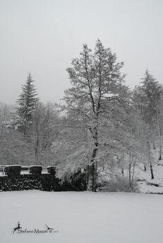 La magia dell'inverno di   http://stefanomazzei.blogspot.it/2013/01/la-magia-dell-inverno.html