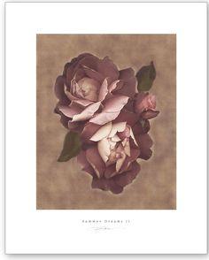 Summer dreams II-  S.G.Rose imageconscious.com
