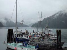 Gold River BC Rain and fog . Vancouver City, Vancouver Island, Gold River, Boat House, Sunshine Coast, British Columbia, Sailing Ships, Charlotte, Rain
