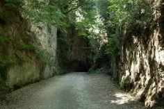 """""""Il Cavone"""" fa parte delle Vie Cave, una suggestiva rete viaria di origine etrusca tra Sovana, Sorano e Pitigliano, in provincia di Grosseto in Toscana. La via del Cavone è interamente scavata nella roccia tufacea."""
