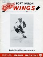 Historical facts and data about the Port Huron Wings hockey team of the IHL, including players, standings, logos, and game program images. Port Huron, Hockey Teams, Wings, Baseball Cards, Cover, Feathers, Feather, Ali