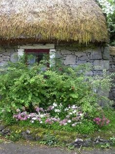 Ireland Thatched Roof cottage by doreen.m