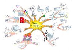 Les cartes mentales en classe. Concrètement, pour quoi faire ? ----- Thot Cursus présente le  blogemapsfree.fr, entièrement dédié aux cartes mentales, et l'entretien avec Claire Egalon.   Mise à jour le jeudi 19 avril 2012