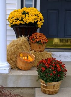 The perfect fall entry! Mums in wooden baskets, straw bales & gourds.