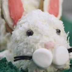 Make an adorable bunny cake with ease!