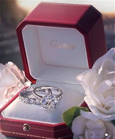 Cartier. this is perfect. oh my word.