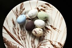 Tiny praline Quail Eggs that look like the real thing. By Coco Chocolate UK