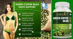 Health Benefits Of Green Coffee Bean Lean Vital