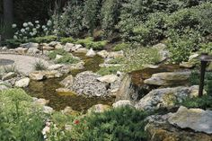 Fun, beautiful and safe for kids...think pondless waterfall and stream :: Hometalk