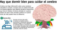 ¿Respetas tus horas de sueño? Es sumamente importante brindar al cerebro el tiempo necesario para recuperarse y procesar toda la información asimilada durante el día. Conoce aquí: http://tugimnasiacerebral.com/mapas-conceptuales-y-mentales/ejemplos-de-mapas-conceptuales-efectivos 7 ejemplos de Mapas Conceptuales Efectivos que te ayudarán a mejorar el rendimiento de tu cerebro. Resultado: aprendizaje efectivo en menor tiempo y esfuerzo. #Mapas #conceptuales #aprendizaje #cerebro