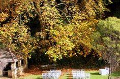 Wedding Ceremonies @ Utopia | Utopia @ Waterfall Gully